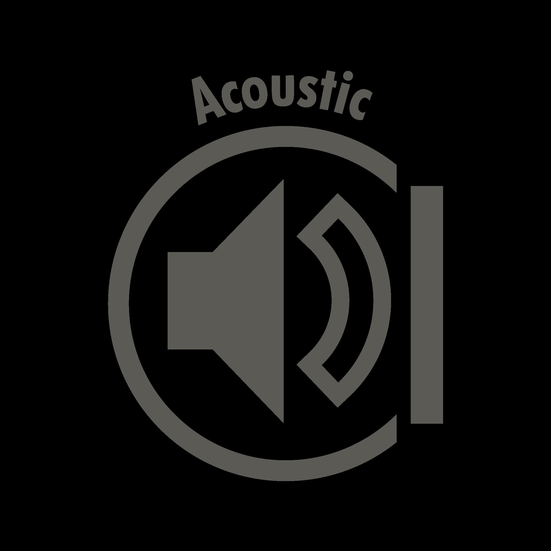 Acoustic Icon